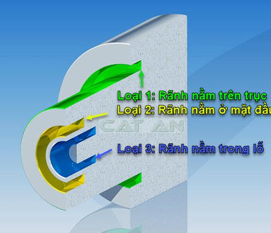 Cac_loai_ranh_mat_dau